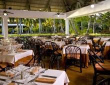 Catalonia Bavaro Beach Golf & Casino Resort 5* (Punta Cana, Dominican Republic)