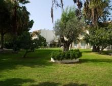 Filerimos Village 4* (Ialyssos, Rhodes, Greece)