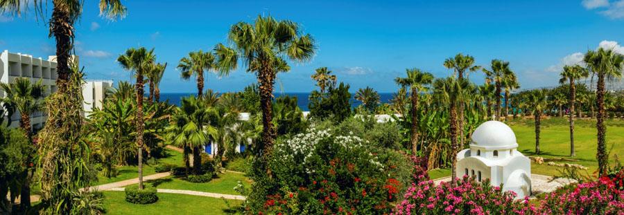 Azia Resort Amp Spa 5 Paphos Cyprus