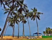 Amagi Beach 3* (Marawila, Sri Lanka)