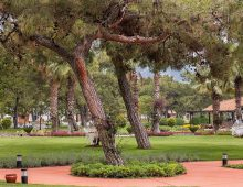Garden of hotel Rixos Beldibi 5* (Kemer, Turkey)