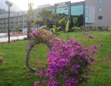 Enter to the Eldar Resort Hotel 4* in Goynuk, Kemer, Turkey